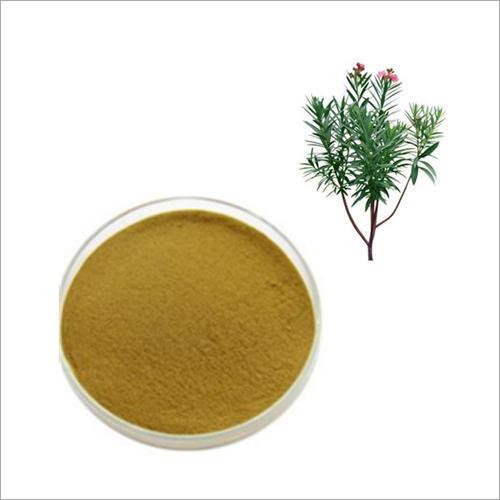 Nerium Indicum Extract