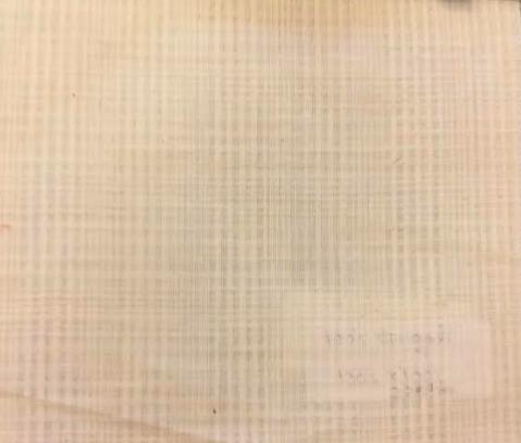 Raw Cotton Fabric