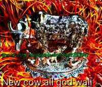 God Cow Status