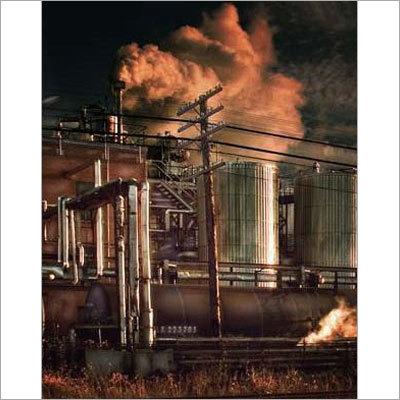 Environmental Status Reports