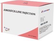AMOXICILLINE INJECTION