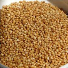 Barnyard Millets