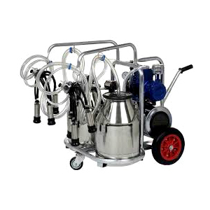 Double Can Double Milking Machine