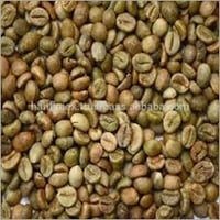 Robusta Beans Unwashed