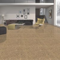 Porcelian Floor Tiles