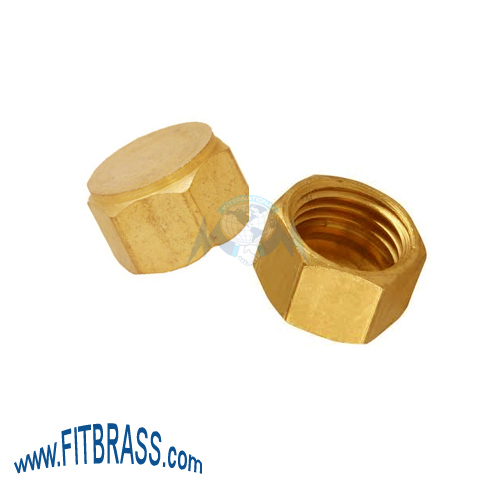 BRASS HEX DEAD NUT