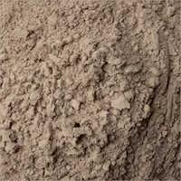 Babul Fali Powder