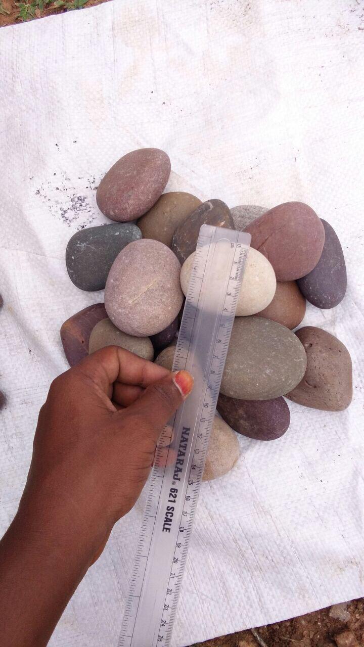 natural Green River Pebbles