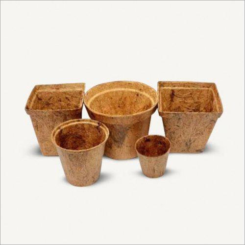 Coco Peat Pots