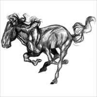 Pencil Horse Sketch