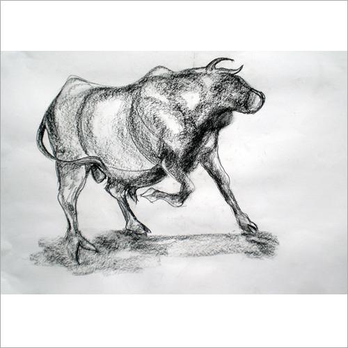 Angry Bull Sketch