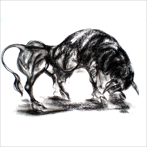 Pencil Bull Sketch