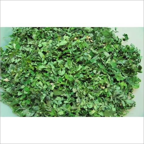 Dry Moringa Leaves