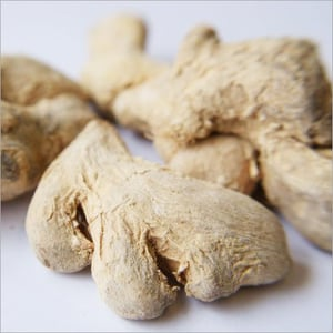 Dried Root Ginger