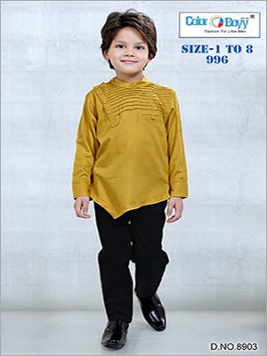 Boys Fancy Indo Western Wear