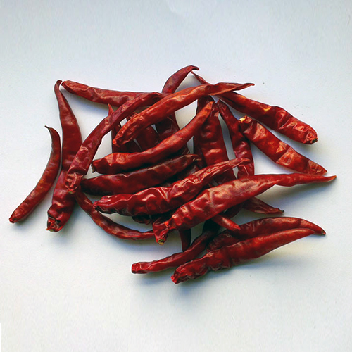 Teja Chili