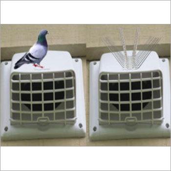 Birds Solution