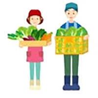 HDPE Blue Net for Vegetable Farming