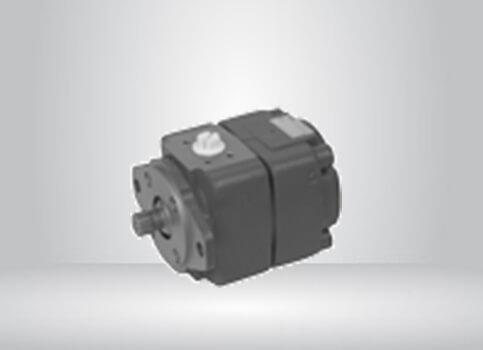 Internal Gear Unit QXEM for Motor/Pump Service