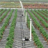Drip Irrigation Sprinkler