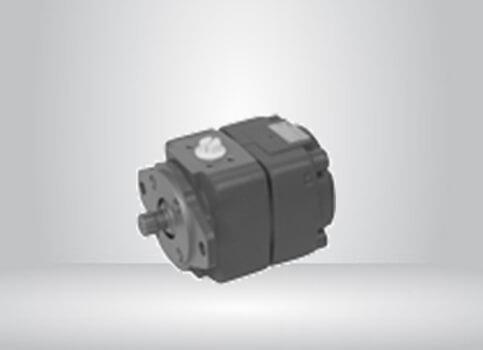 Internal Gear Unit QXEM For Motor/Pump