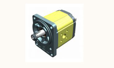 Unidirectional Hydraulic Pump ø80 Standard German FLANGE – Group 2