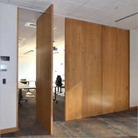Pivot Wood Veneer Painted Door
