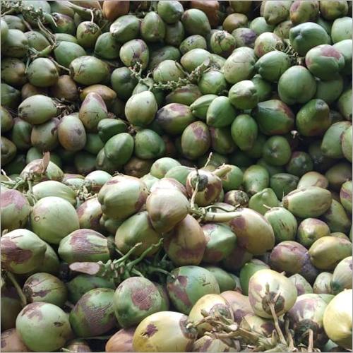 Raw Green Coconut