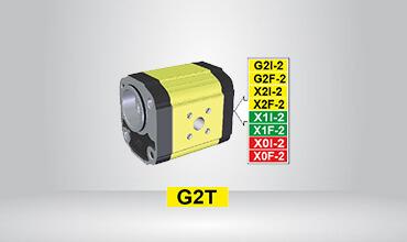 Standard German BH Primary Pump Ø52 Cast Iron Flange GT216