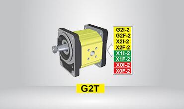 Standard German Primary Pump Ø80 Cast Iron Flange GT217