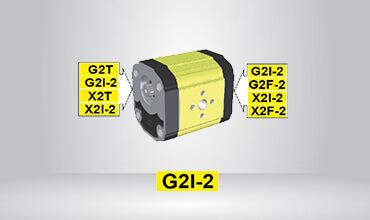 Shaped Intermediate Pump Ø36.5 Female Cast Iron Flange GI202