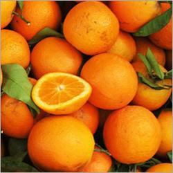 Orange Fresh Diffuser Oil