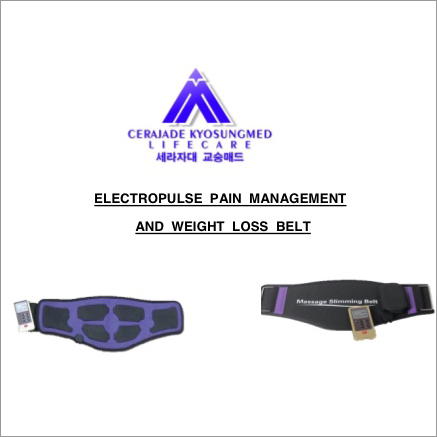Electropulse Pain Management And Weight Loss Belt