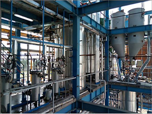 Canola Oil Refining Plant