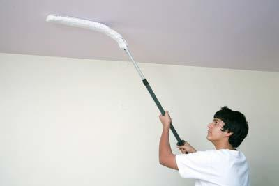 Wall Cleaning Duster