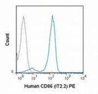 CD86 Monoclonal Antibody(PE/Cyanine7 Conjugated)