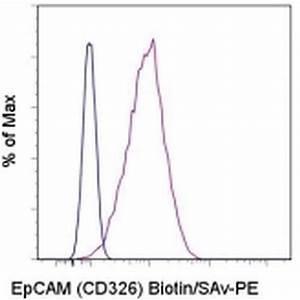 CD326 Monoclonal Antibody(PE Conjugated)[9C4]