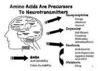 Amino Acid Therapy
