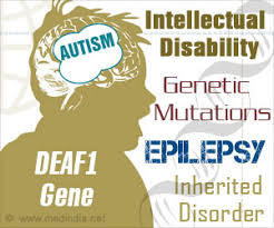 Autism And Epilepsy Diagnosis And Treatment