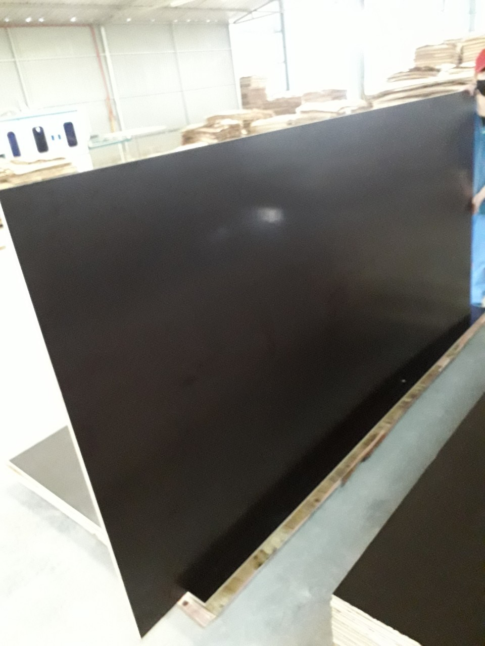 Commercial Film Faced Plywood