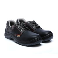 Non Metallic Safety Shoes