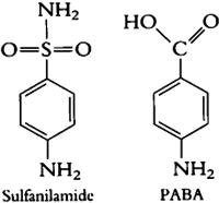 Para-aminobenzoic acid