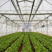 Hi-Tech Greenhouse