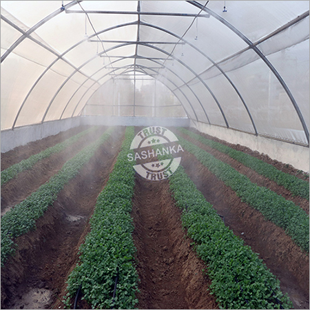 Insect Net Tunnel
