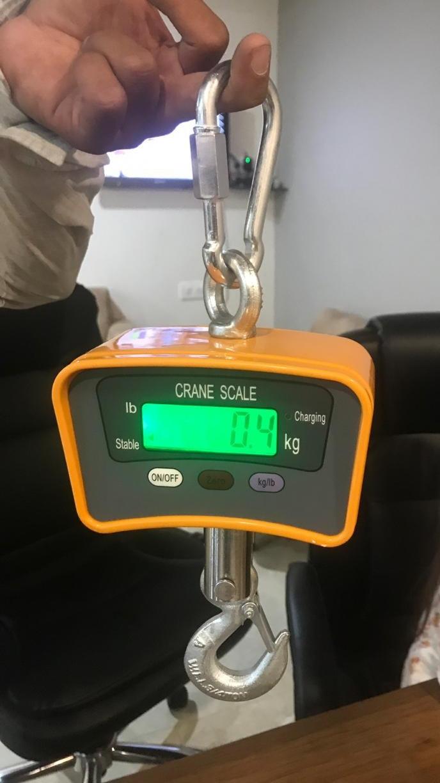 Digital Hanging Scale