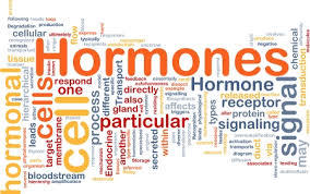 ENDOCRINOLOGY: GLANDS AND HORMONES