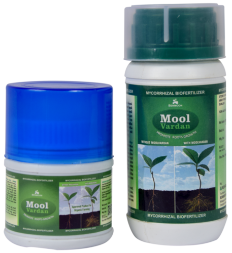 Mycorrhizal Biofertilizer