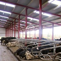 Animal Eco Shelters
