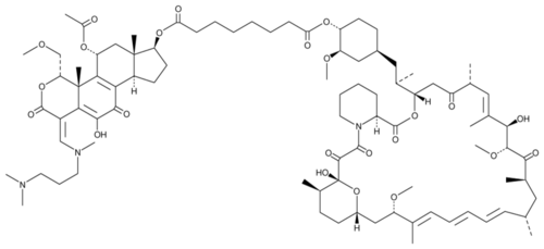 Wortmannin-Rapamycin Conjugate