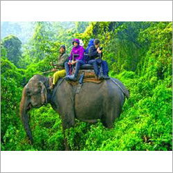 Kerala Wildlife Tours Packages